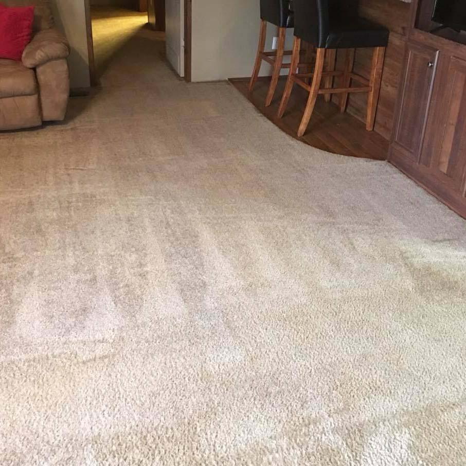 super clean carpet