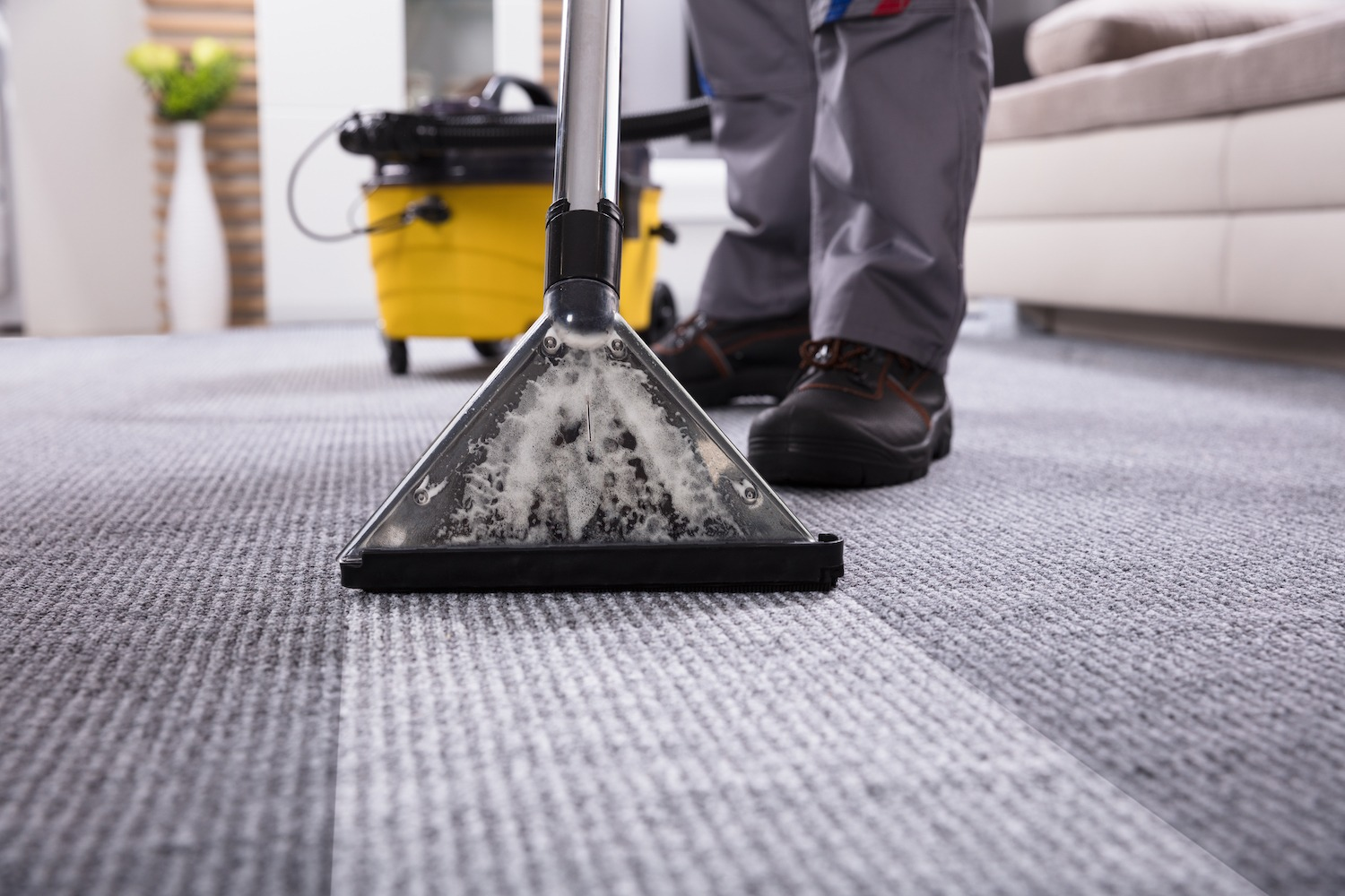 close up of a carpet being clean